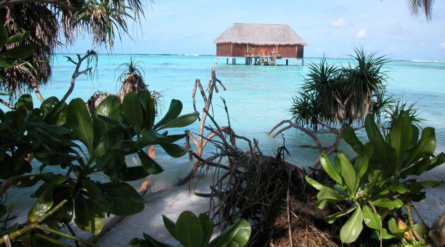 superb hotels maldives