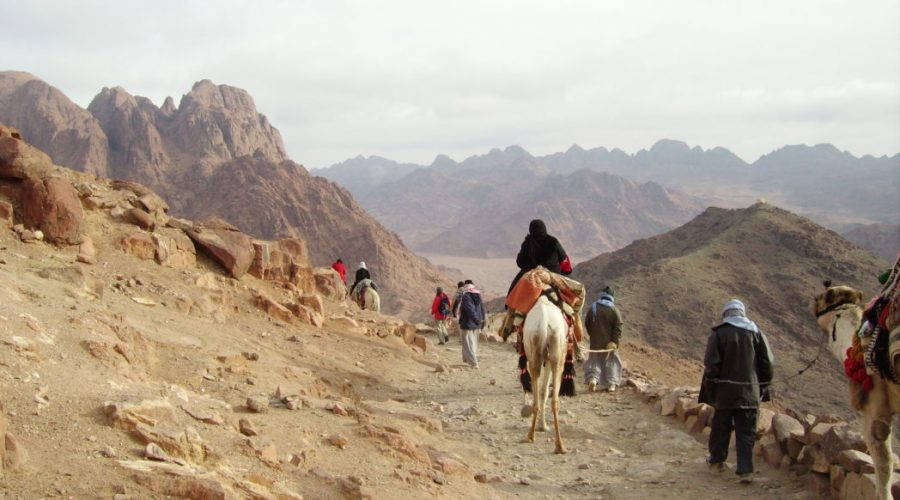 wycieczki doegiptu