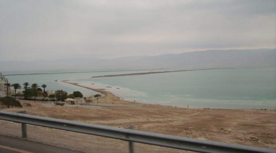 oferty jezioro martwe