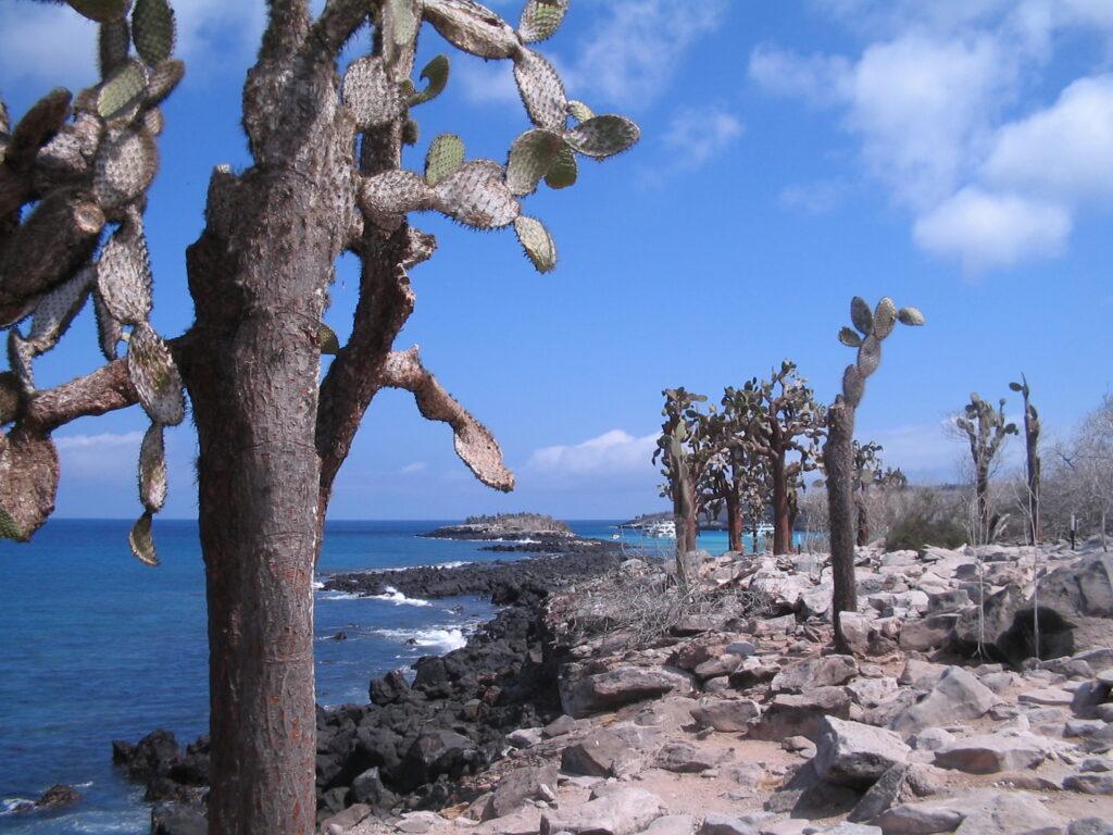wyspa unikatów przyrodniczych zwiedzana np podczas wycieczki doEkwadoru