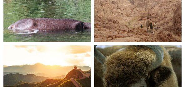 przesyłane zdjęcia z wakacji na konkurs fotograficzny
