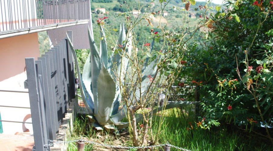 domki toskania