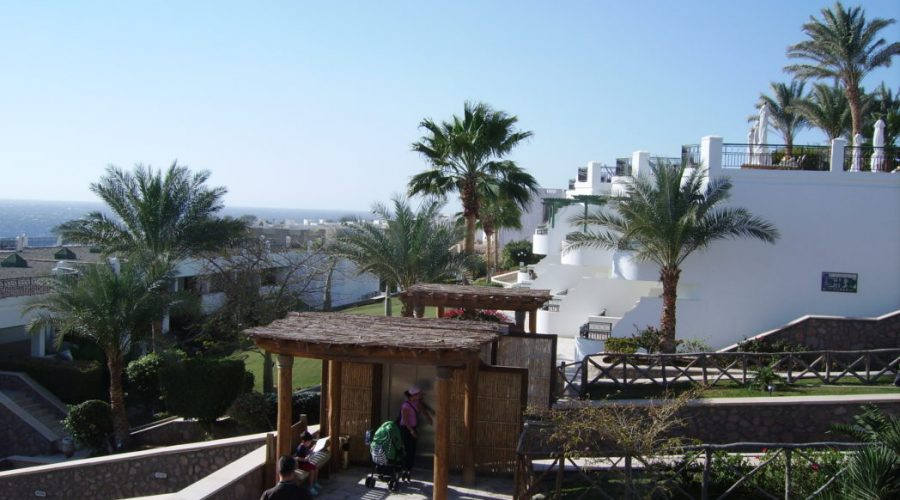 splendid sharm el sheikh hotels