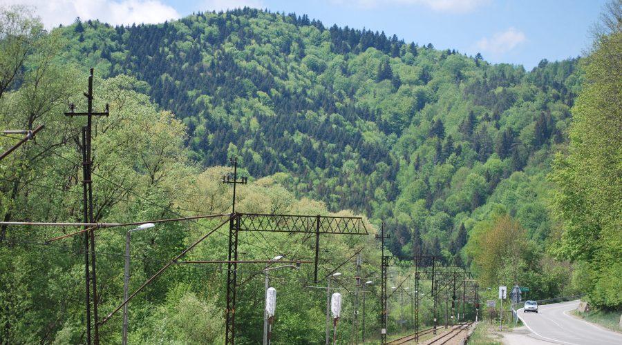 malownicza linia kolejowa przezBeskid Sądecki, uwieczniona podczas wycieczki doWierchomli Wielkiej przy drodze zPiwnicznej Zdroju doMuszyny idalej Krynicy