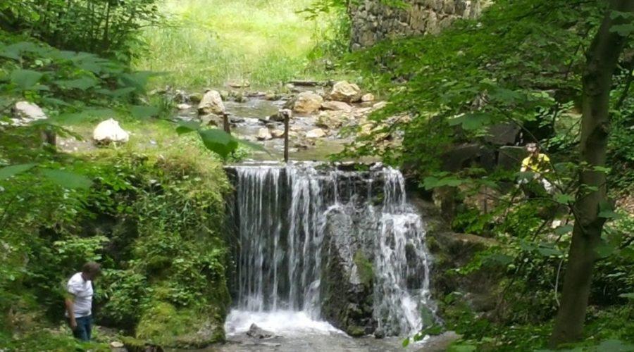 tenczynski park krajobrazowy
