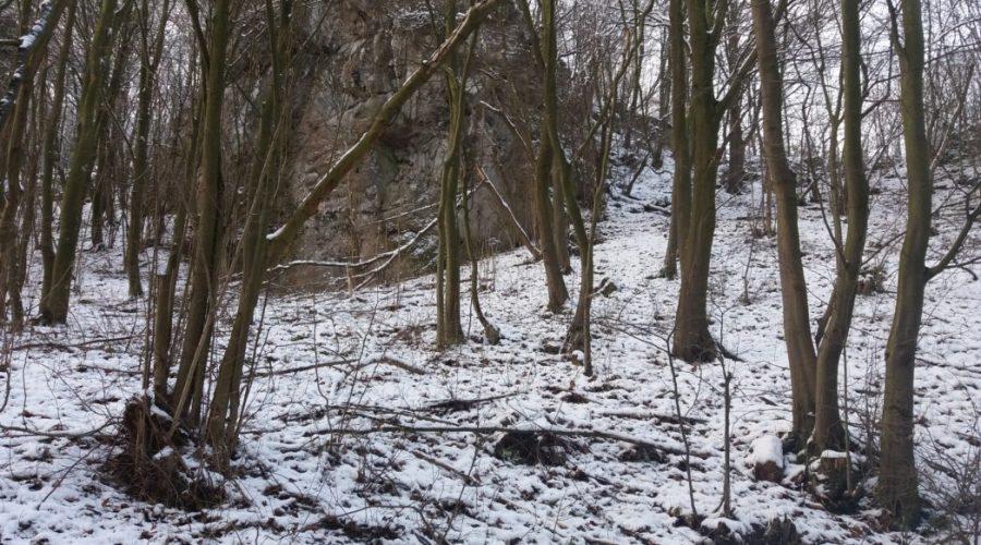 ojcowski park narodowy zima