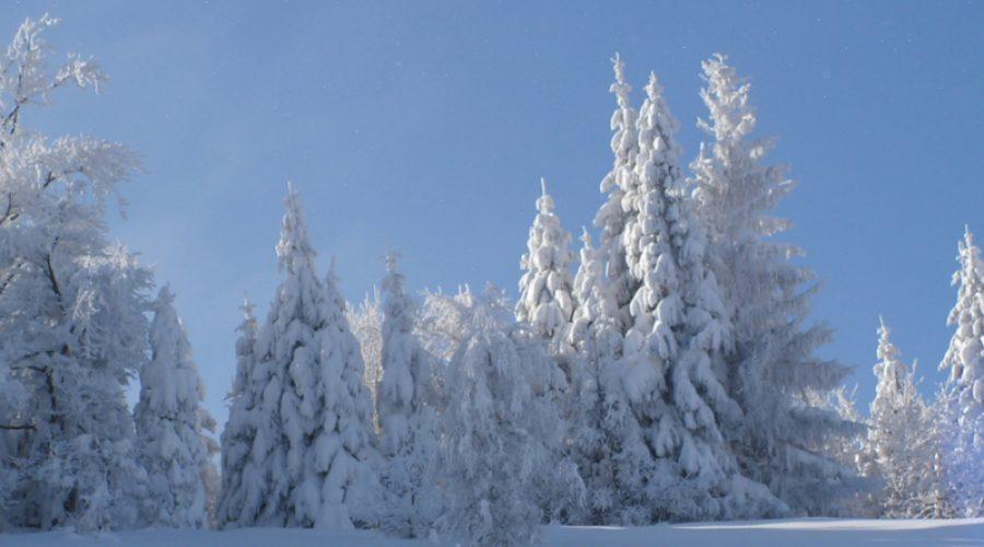 wczasy zimowe