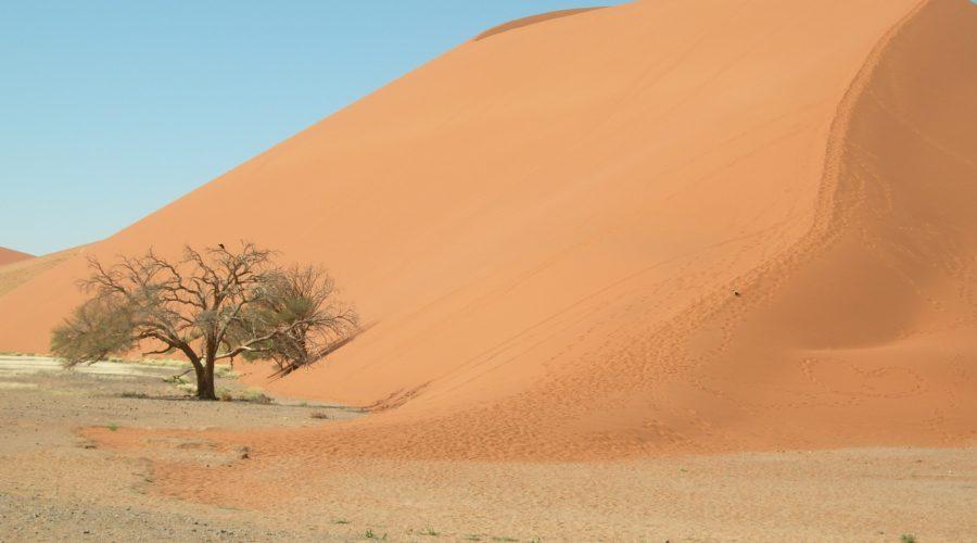 namibia wycieczki