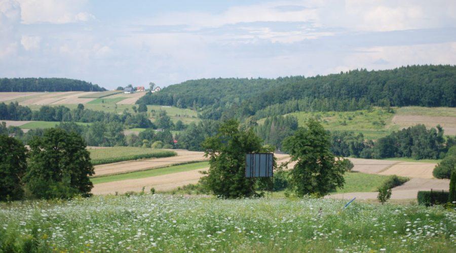 dlubnianski-park-krajobrazowy