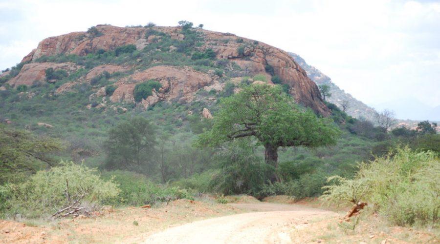 parki narodowe kenii