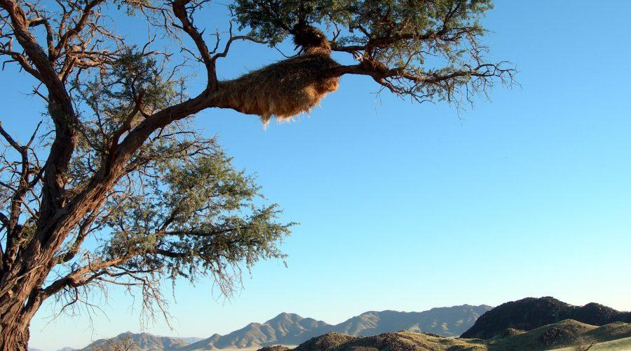 dobre wycieczki poludnie afryki