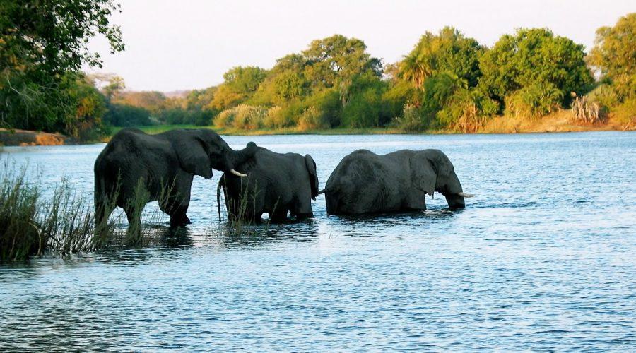afryka poludniowa wycieczki objazdowe