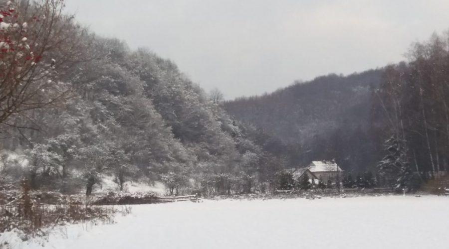 zima wDolinie Prądnika części Ojcowskiego PN